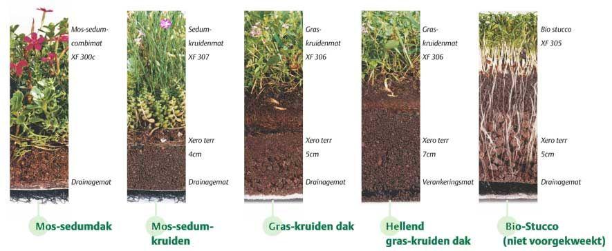 Vegetatiedak kosten