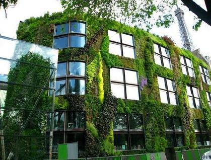 Verticale Tuin Systeem : Groene muur verticale tuin staalkabelstunter