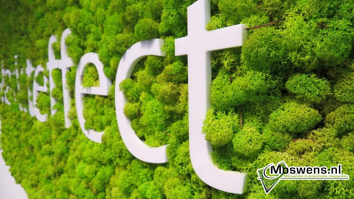 Super verticale tuin, groengevel, geveltuin, levende muur, groene muur &TT34